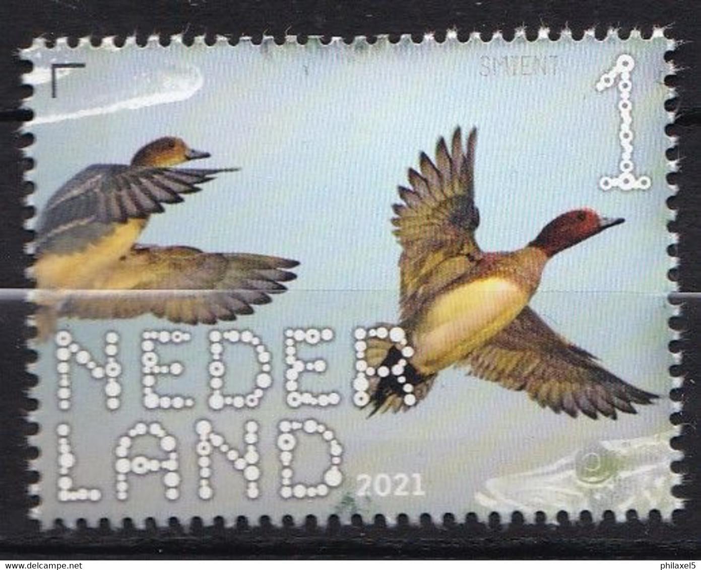 Nederland - Beleef De Natuur - 22 Februari 2021 - De Onlanden - Smient - MNH - Entenvögel