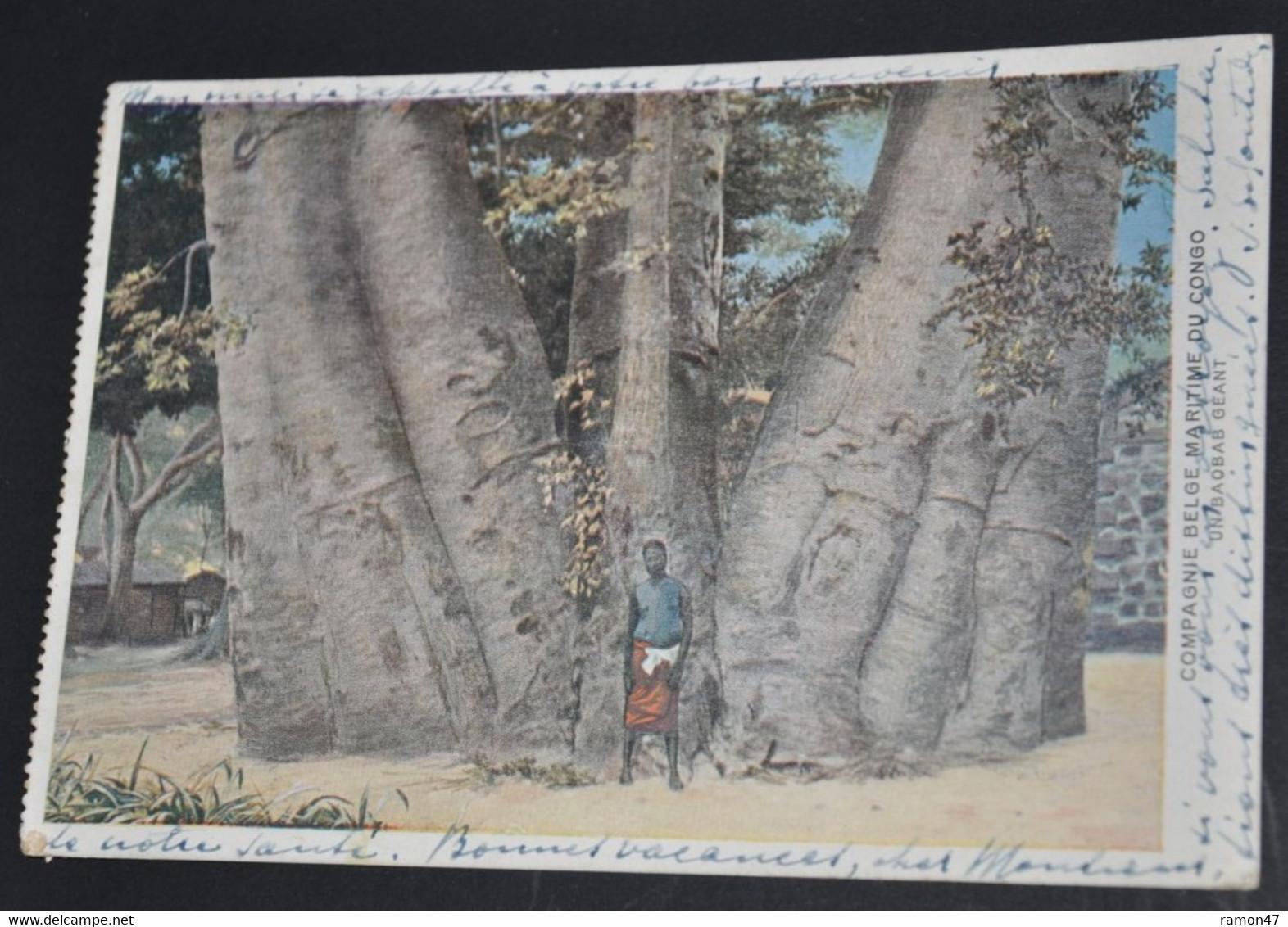 Compagnie Belge Maritime Du Congo - Un Baobab Géant - Belgisch-Congo - Varia