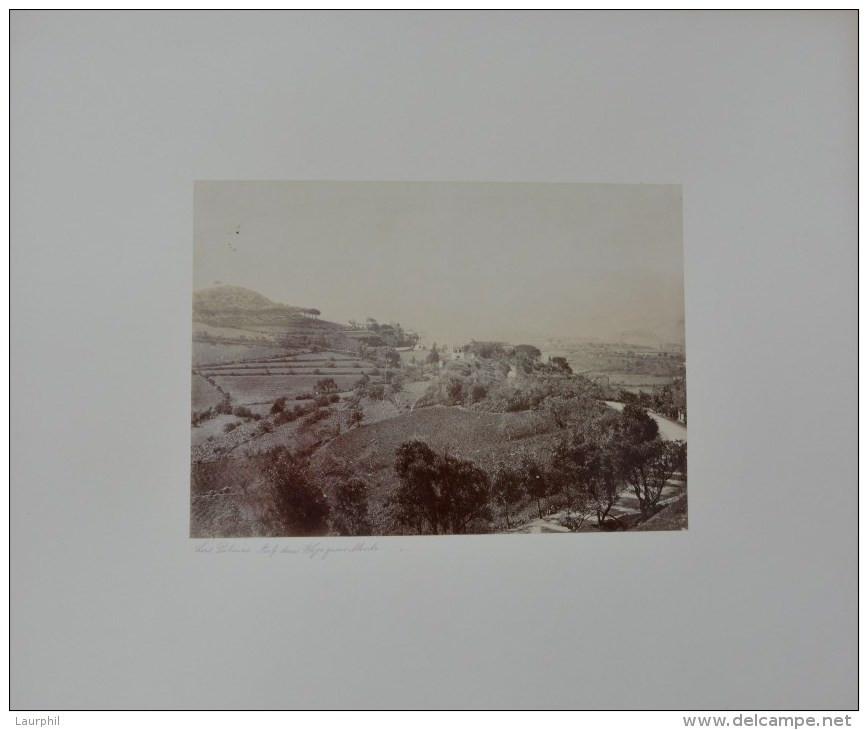 Monte, Las Palmas, Gran Canaria Photographie Ancienne1900 - Antiche (ante 1900)