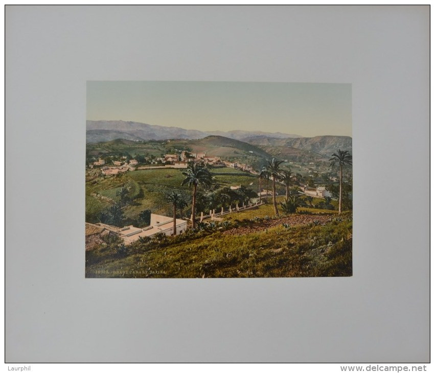 Tafira Gran Canaria Photochrome 1900 - Old (before 1900)