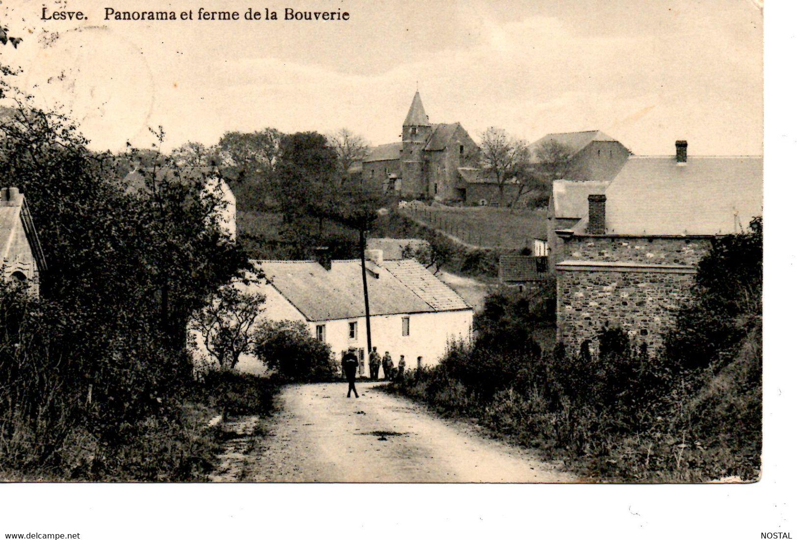 J 42. Lesve: Panorama Et Ferme De La Bouverie - Profondeville