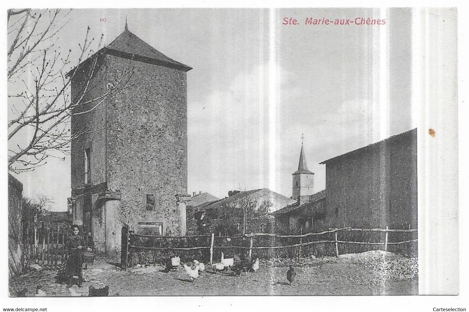 Sainte Marie Aux Chènes Ferme Basse-Cours Pigeonnier Edition Frings & Garms, Vorms. C. Bernhoeft, Luxemburg - Altri Comuni
