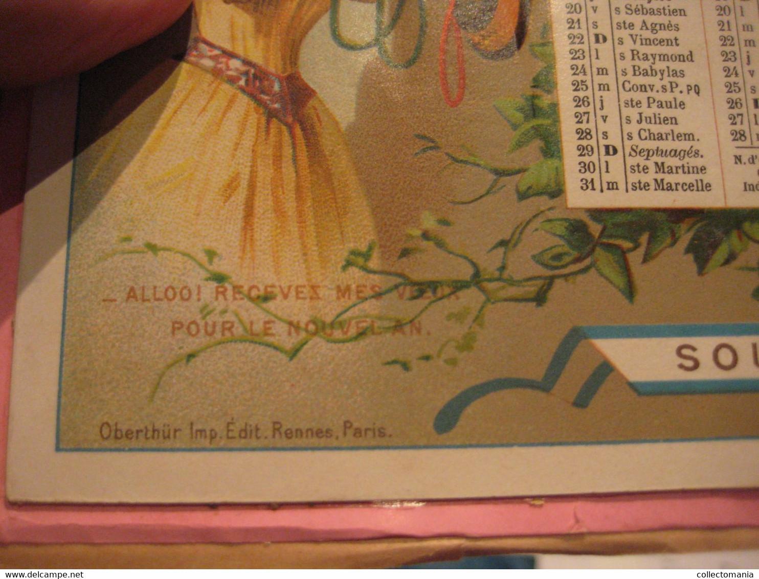Calendrier Almenach C1893 Indicateurs Et Nomenclature Télégraphiques & TELEPHONE De France Et Colonies 21cmX14cm - Big : ...-1900