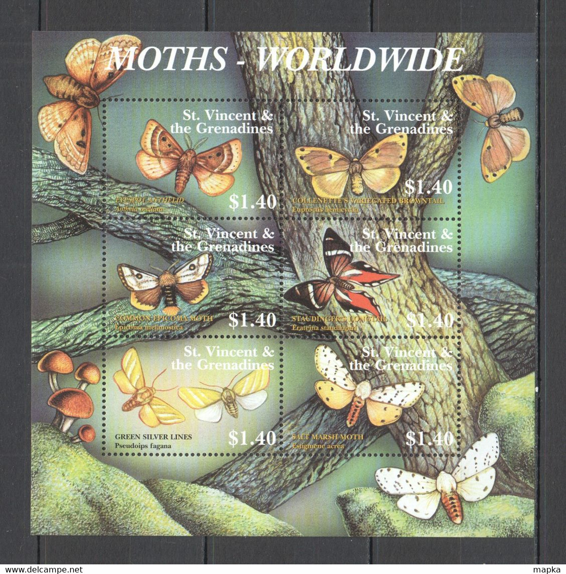 YY004 ST. VINCENT BUTTERFLIES MOTHS WORLDWIDE FLORA & FAUNA KB MNH - Mariposas