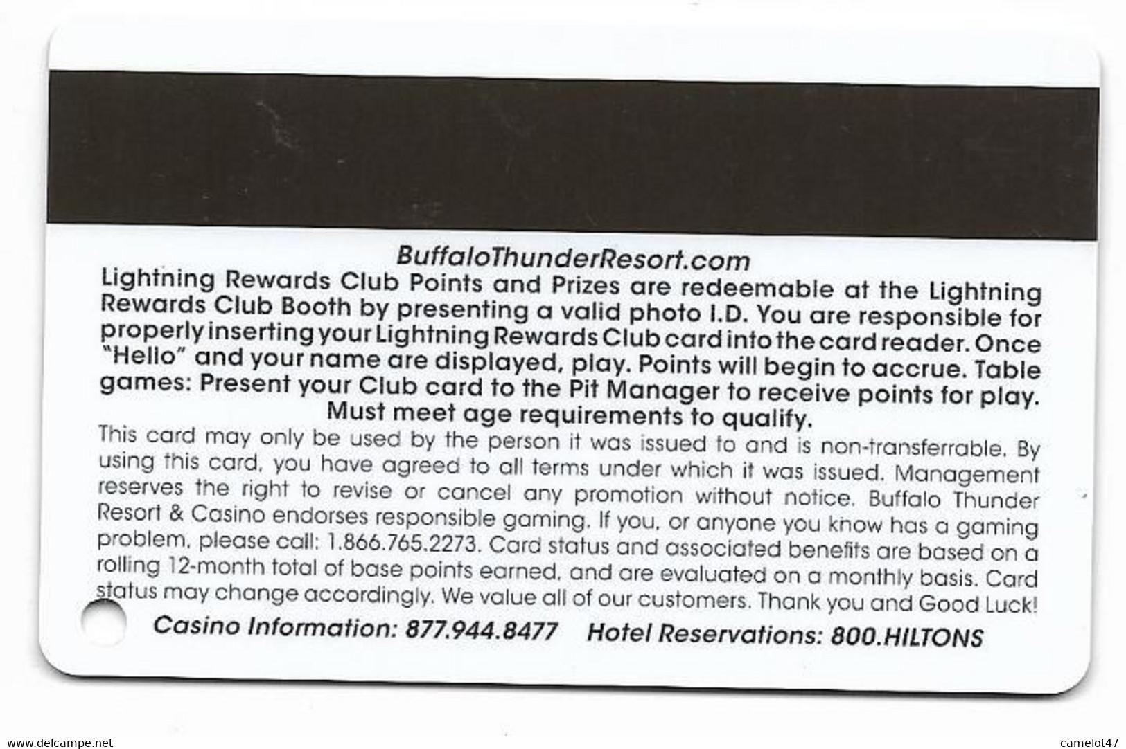 Buffalo Thunder Resort & Casino, Santa Fe, NM,  U.S.A., Older Used BLANK  Slot Or Player's Card, # Buffalothunder-4blank - Casino Cards
