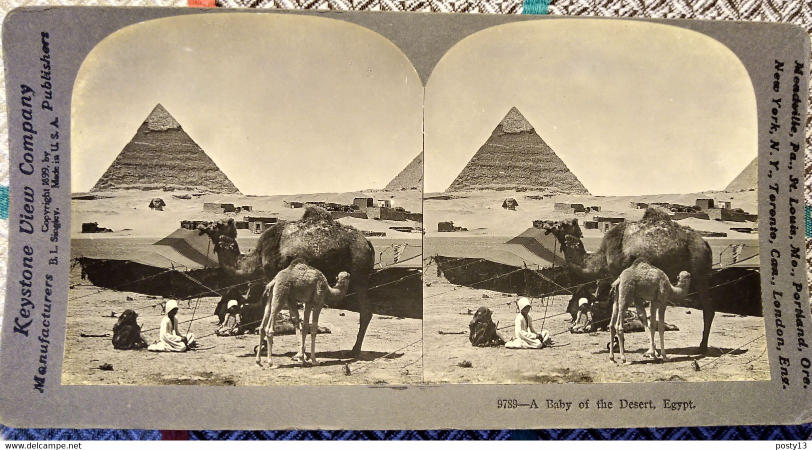 PHOTO STÉRÉO ÉGYPTE - Dromadaires Devant Les Pyramides à Giseh - 1899 -  Ed. Keystone - TBE - Stereoscopio
