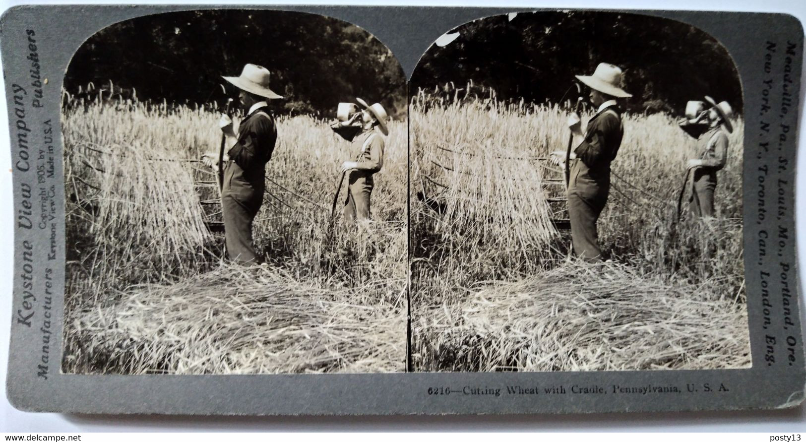 PHOTO STÉRÉO USA - Les Foins En Pennsylvanie -  A Voir ! - 1905 - Ed. Keystone - TBE - Stereoscopio
