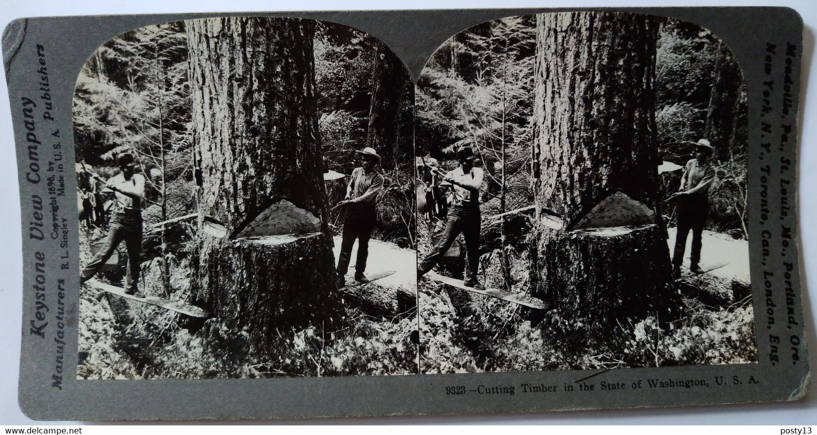 PHOTO STÉRÉOSCOPIQUE USA - Industrie Forestière - Etat De Washington - 1898 - Cliché De Singley  - Ed. Keystone TBE - Stereoscopio