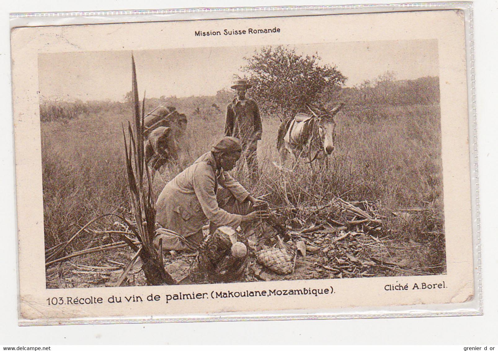 Mozambique Récolte Du Vin De Palmier Mission Suisse Romande - Mozambique