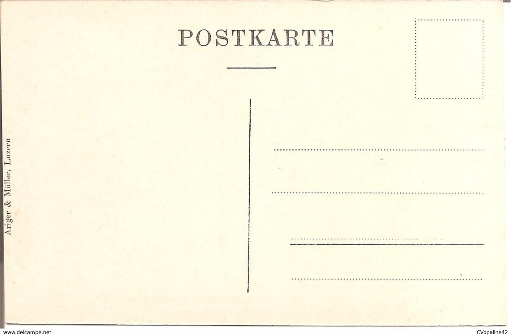 SUISSE - LUZERN - Hôtel St-Gotthard-Terminus  (Walter Döpfner , Besitzer) - LU Lucerne