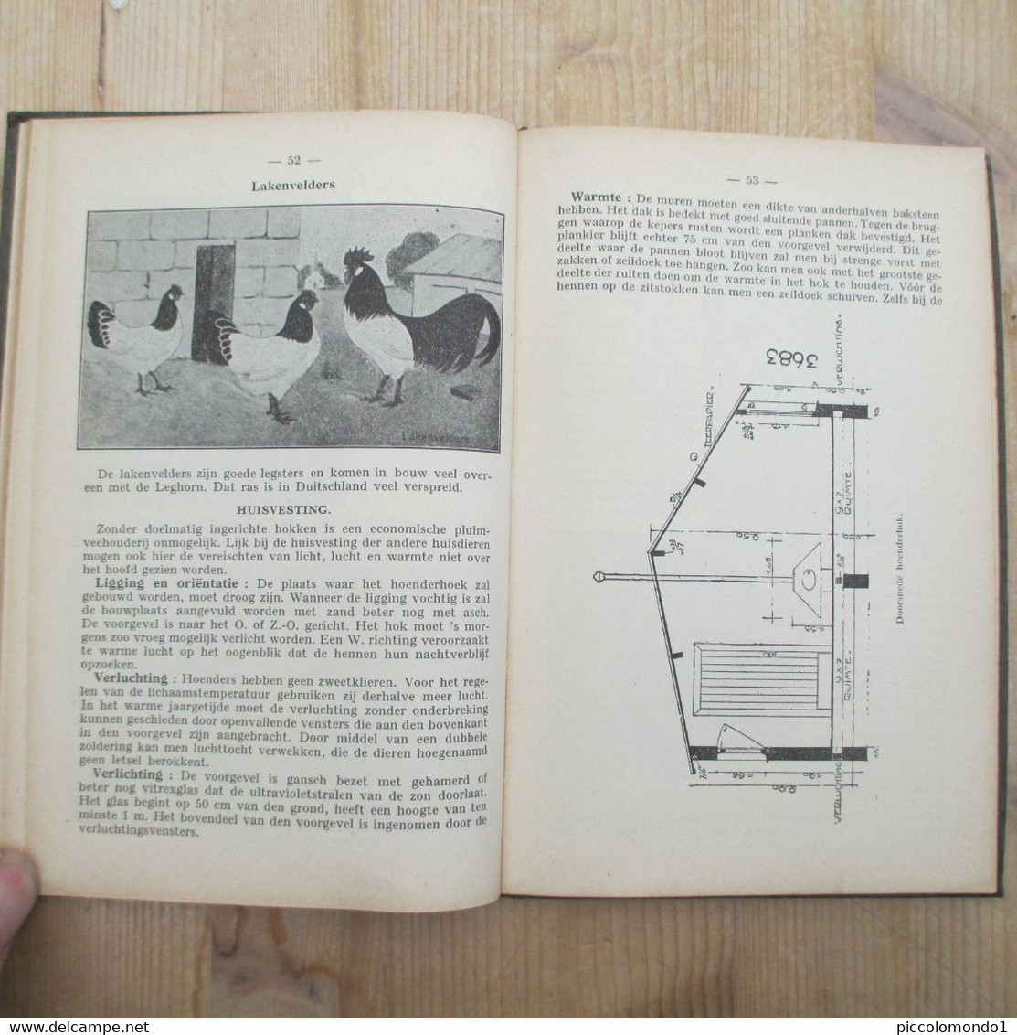 Terug Naar Het Land Leerboek Dierenteelt Paard Hoenders Leghorn Varken Geit 1942 Kleinvee Landbouwschool - Practical