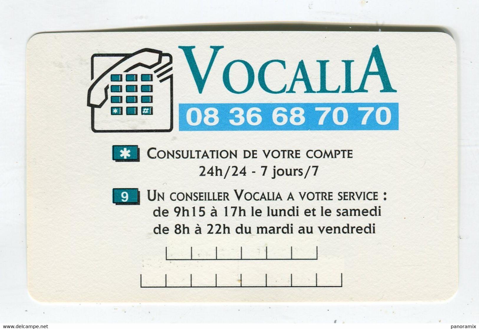 Carte De Visite °_ Carton-Société Générale-Service Vocalia-Consultation - Visiting Cards