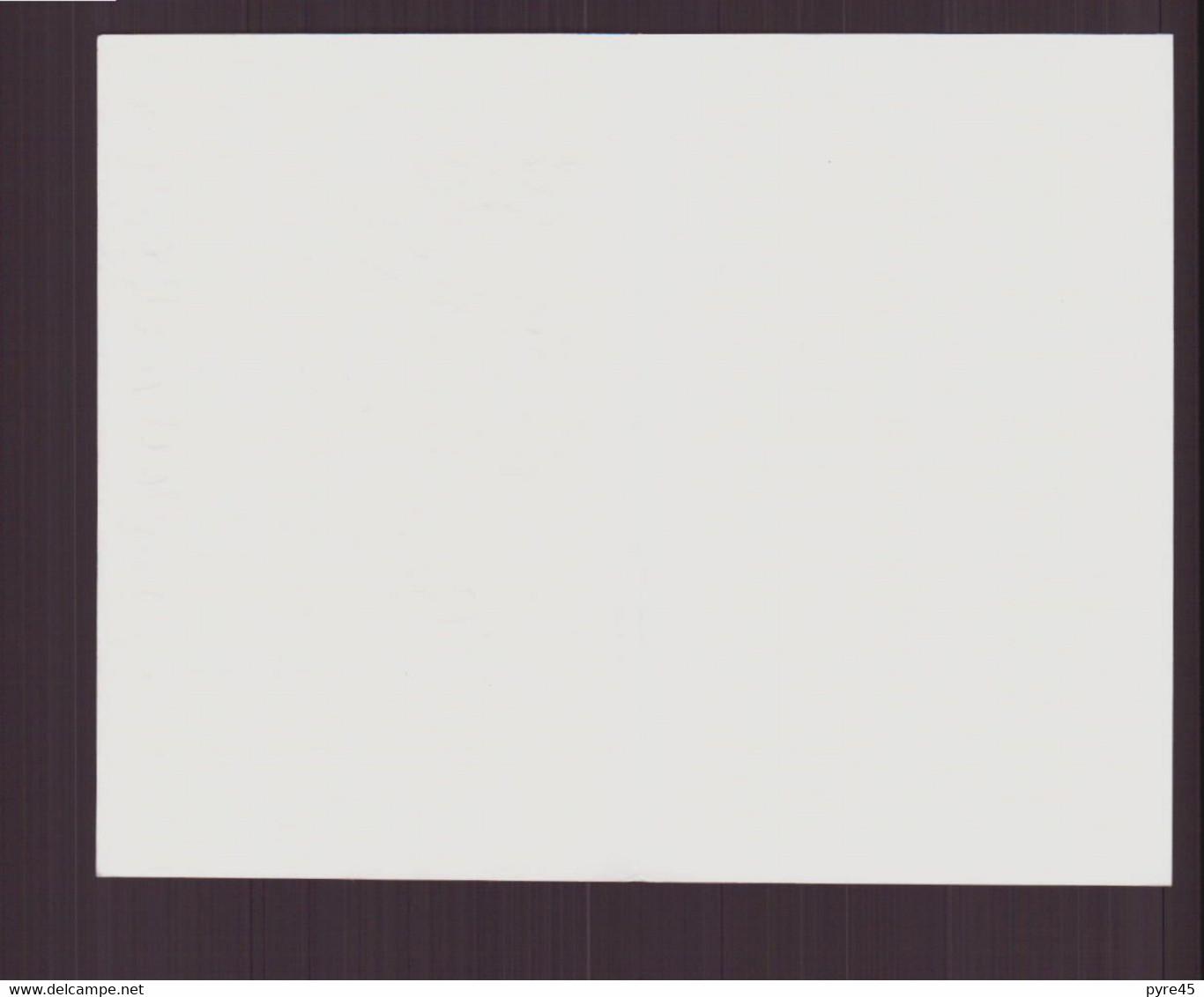 Carte De Visite Vierge ( Motifs Géométriques ) - Visiting Cards