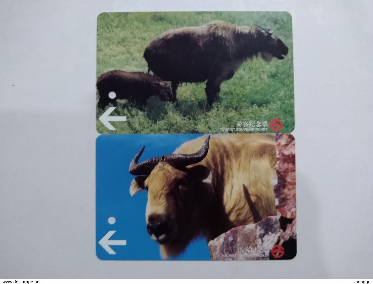 China Transport Cards, Budorcas Taxicolor Bedfordi, Metro Card, Shanghai City, (2pcs) - Unclassified