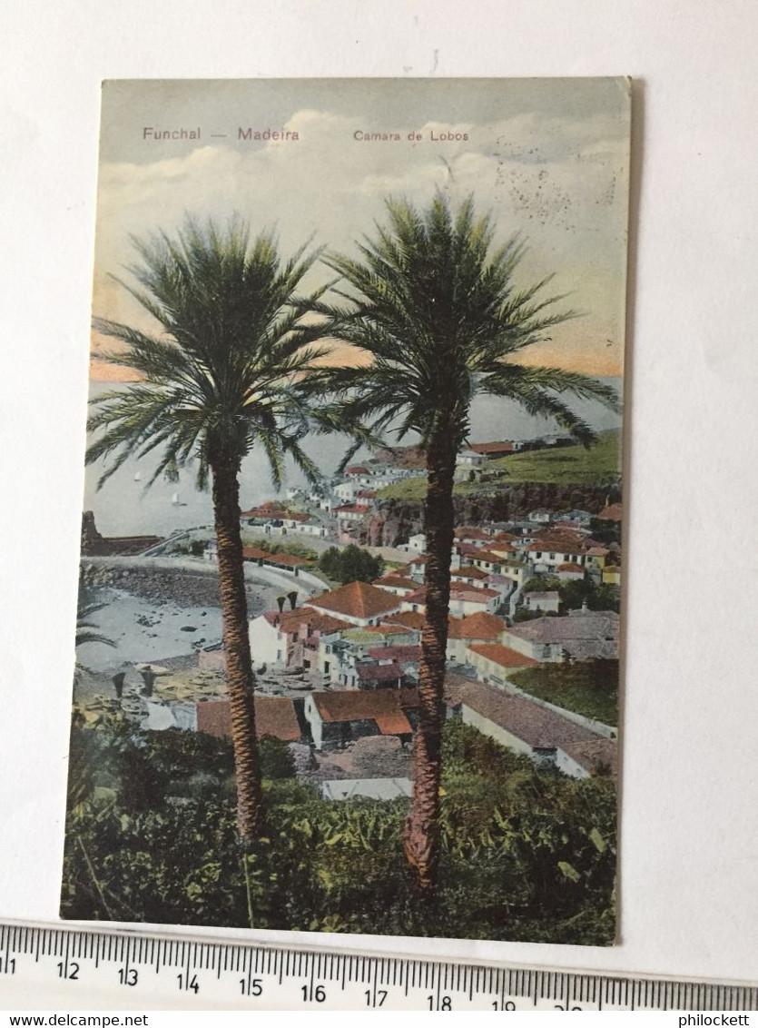 MADEIRSA FUNCHAL - CAMARA DOS LOBOS - MARITIME TO SOUTH AFRICA 1908 - Mundo