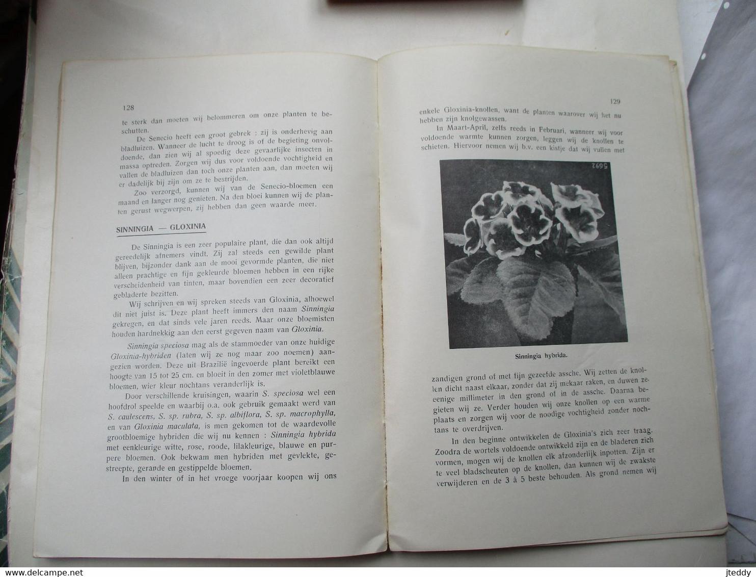 Oud Boek PLANTEN IN ONZE WONING Door J . JENNES  Uitgave BELGISCHE  BOERENBOND 1937 - B. Bloemplanten & Bloemen