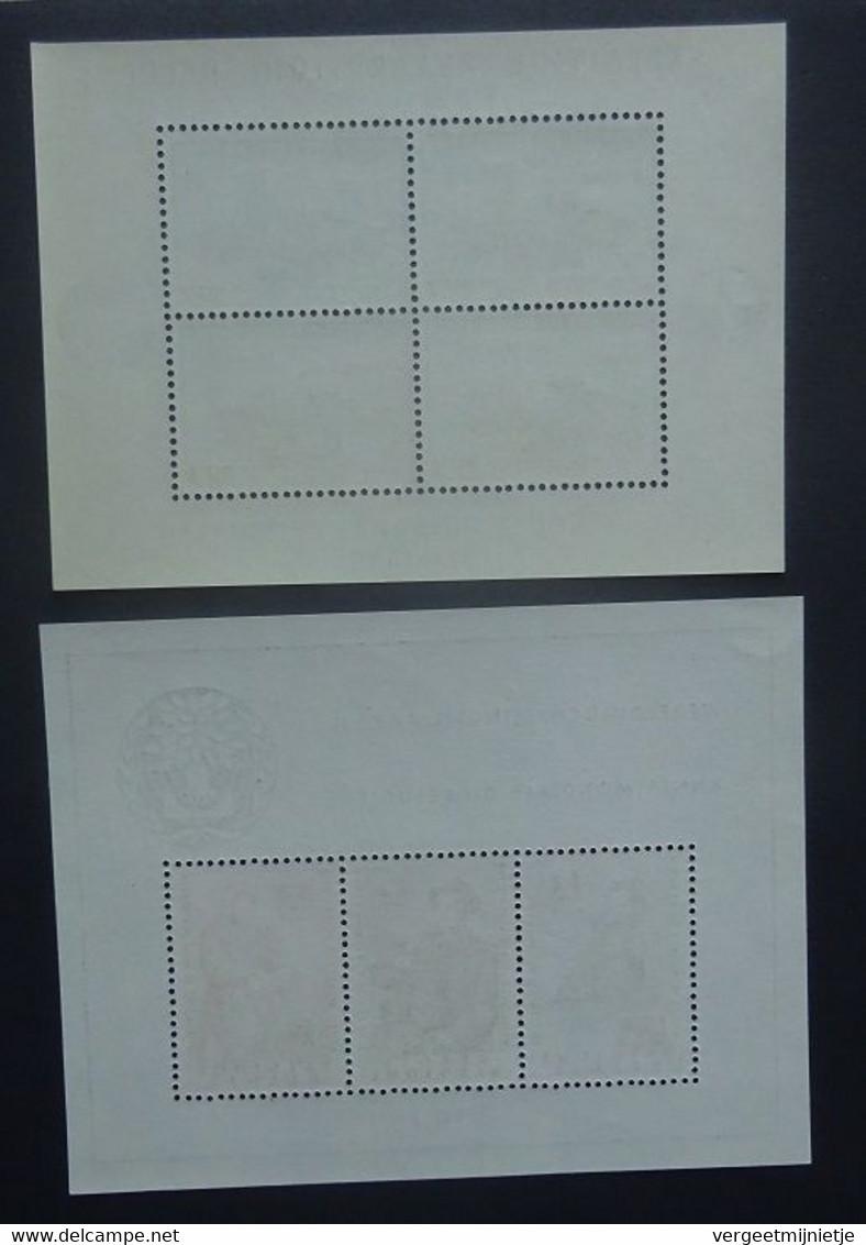 BELGIE  1957-60      Blokken  31 - 32        Postfris **    CW  265,00 - Blocks & Sheetlets 1924-1960