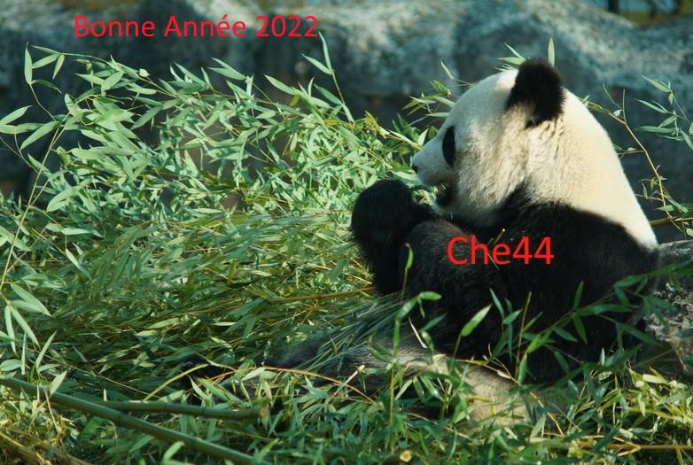 Che44