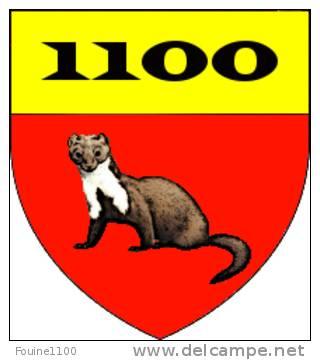 fouine1100