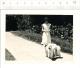 Petite photo Femme et deux chiens / ??? Chien L�vrier Afghan ???  // CP 2/301