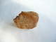 Großer Natur-Bernstein Gelb 15gr.    (329) - Mineralien & Fossilien