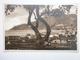 Postcard Salerno Lato Orientale By Cataneo My Ref B1523 - Salerno
