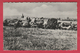 Clermont-sur-Berwinne - Panorama ... Du Village ( Voir Verso ) - Thimister-Clermont