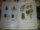 Publicité  Agriculture QUINO  Livretdescriptif Sur Les Produits 13 Pages Bonnes Illustrations - Pubblicitari
