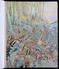 TRES RARE - AUX AMATEURS DE L'ILLUSTRATEUR JOB - GRAND OEUVRE DE CARTON DE WIART * LA BELGIQUE * 40 Litho's Pleine Page - 1901-1940