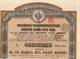 VP9768 - SAINT PETERSBOURG 1889 ( Russie ) - Emprunt Russe - Russie
