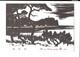 40561 - La Chine Ou Le Japon - China Or Japan - China Of Japan - Cartes Postales