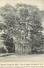 A-17.5635 :   BAMBOO GROUP ST ANNS. PORT OF SPAIN TRINIDAD. - Trinidad
