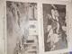 Sur Le Vif N° 15 Du 20-02-1915 Guerre Prisonnier Militaria Soldat Bataille Poilu Wahn Timok Chabatz Glichicth Massacre - Livres, BD, Revues