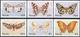 Nevis  Butterflies - Vlinders