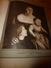 1910 L'ILLUSTRATION:Les 4 Beautés De La CORSE (Monte-Piana,Porto,Cargèse,Evisa,Campo Di Loro,Calcina,Le Casone,etc - Journaux - Quotidiens