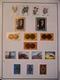 CARTON COLONIES FRANCAISES APRES INDEPENDANCE TIMBRES/BLOCS MAJORITE NEUFS*/AFFAIRE A SAISIR - Collections