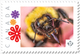 BEE HONEYBEE Abeille, Ape, Biene, Abeja, MACRO Personalized Postage Stamp MNH Canada 2018 P18-06sn02 - Bienen