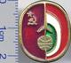 141 Space Soviet Russia Pin INTERKOSMOS USSR-Hungaria - Raumfahrt