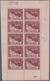 Belgien: 1926/1927. Tuberculosis 5fr+1fr In A Miniature Sheet Of 10, Bearing The Margin Inscription - Belgique