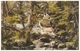 Becky Falls Dartmoor Unused C1936 - Frith - Other