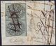 1852 - 1/2 Baj Grigio Azzurro, Coppia Verticale TETE-BECHE (1f), Perfetta, Usata Su Frammento Con An... - Kirchenstaaten