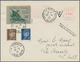 Dt. Besetzung II WK - Frankreich - St. Nazaire: 1945, 50 C Schwarzopalgrün Auf Mittelgraugrün, Zusam - Occupation 1938-45