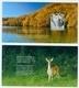 Croatia 2019 Plitvice Water Waterfall Lake Wood National Park Booklet Nature Preserve Letter Japan China - Croazia
