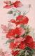 Catharina Klein, Bouquet De Pavots, Litho (506) - Klein, Catharina