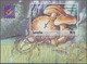 """Thematik: Pilze / Mushrooms: 2001, Lesotho. Imperforate Souvenir Sheet (1 Value) From The Issue """"Mus - Pilze"""