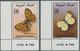 Thematik: Tiere-Schmetterlinge / Animals-butterflies: 1985, MOROCCO: Butterflies Complete Set Of Two - Vlinders