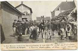Zingem - Le Raid Militaire International Bruxelles-Ostende, 24 Aout 1902 - Au Controle De Syngem - Zingem