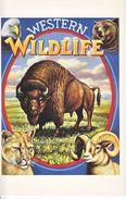 U.S. LEGENDS Of The WEST   MAXI CARD  BUFFALO,   WESTERN WILDLIFE - Maximum Cards