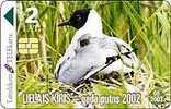 LATVIA- BLACK- HEADED GULL- BIRD 2002 - Latvia