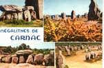 CARTE POSTALE DE CARNAC - MEGALITHES - ALIGNEMENTS DU MENEC ET DE KERMARIO - Dolmen & Menhirs